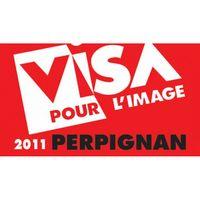 Logo-Visa-2011