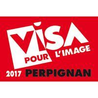 Logo-Visa-2017